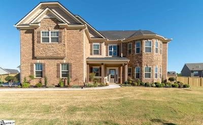 Simpsonville Single Family Home For Sale: 127 Angel Falls