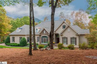 Travelers Rest Single Family Home For Sale: 339 Glen Hollow