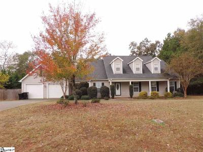 Anderson Single Family Home For Sale: 124 Hannah