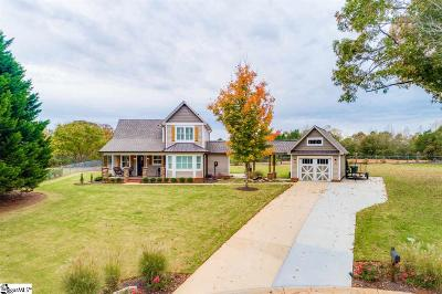 Greer Single Family Home For Sale: 145 High Meadows