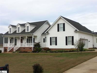 Greenville County Single Family Home For Sale: 6 Saddle Creek