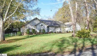Easley Single Family Home For Sale: 156 Galerie
