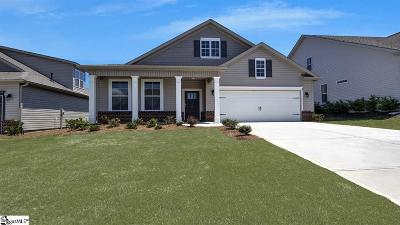 Anderson SC Single Family Home For Sale: $245,923