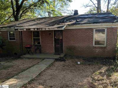 Greenville Single Family Home For Auction: 133 Catlin
