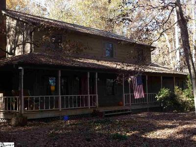Easley Single Family Home For Sale: 217 Dove Hill