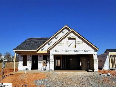 Greer Single Family Home For Sale: 206 Devonfield