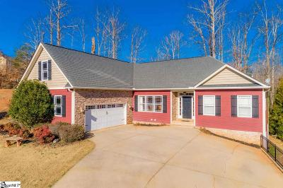 Greenville County Single Family Home For Sale: 15 Fernwalk