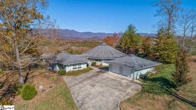 Pickens SC Single Family Home For Sale: $370,000
