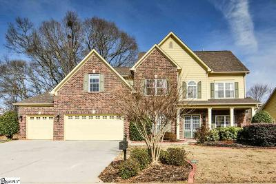 Greenville County Single Family Home For Sale: 407 Abby