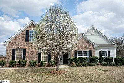 Greenville County Single Family Home For Sale: 3 Elstar Loop