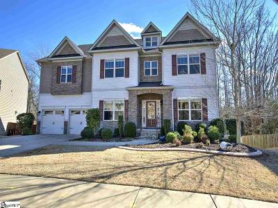 Simpsonville Single Family Home For Sale: 142 Creek Shoals