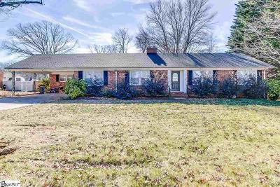 Taylors Single Family Home For Sale: 802 Brushy Creek