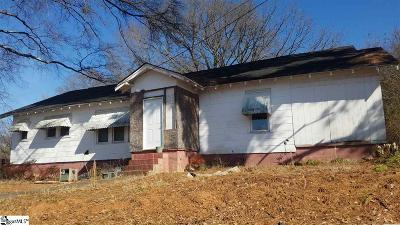 Easley Single Family Home For Sale: 110 Hillcrest