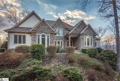 The Cliffs At Glassy, The Cliffs At Keowee, The Cliffs At Keowee Falls, The Cliffs At Keowee Falls North, The Cliffs At Keowee Falls South, The Cliffs At Keowee Springs, The Cliffs At Keowee Vineyards, The Cliffs At Mountain Park, Cliffs Valley Single Family Home For Sale: 904 Mountain Summit