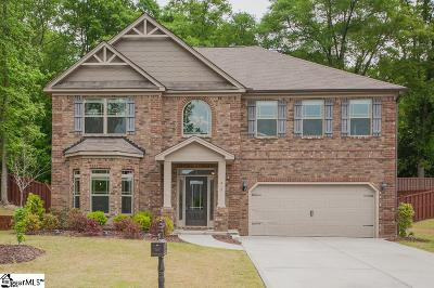 Greenville County Single Family Home For Sale: 217 Montalcino