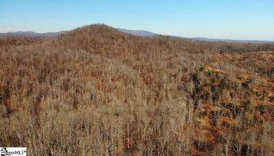 Travelers Rest Residential Lots & Land For Sale: 159 Burns