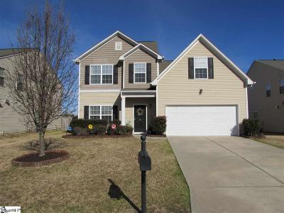 Simpsonville Single Family Home For Sale: 30 Chapel Hill