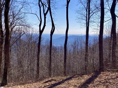 Travelers Rest Residential Lots & Land For Sale: 1347 Panther Park