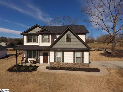 Greenville Single Family Home For Sale: 390 McCall