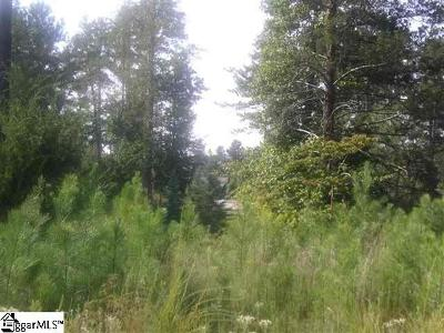 Residential Lots & Land For Sale: Hr45 Cliffs Falls South