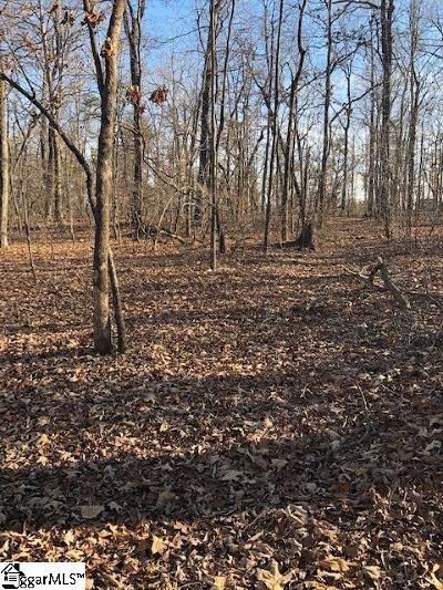 Greer Residential Lots & Land For Sale: 242 N Rutherford