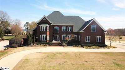 Greer Single Family Home For Sale: 224 Sandy Run