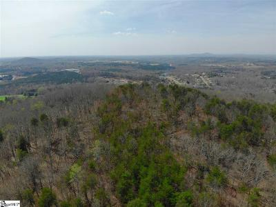 Easley Residential Lots & Land For Sale: W Fruit Mountain