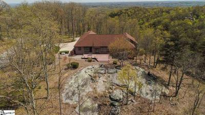 The Cliffs At Glassy, The Cliffs At Keowee, The Cliffs At Keowee Falls, The Cliffs At Keowee Falls North, The Cliffs At Keowee Falls South, The Cliffs At Keowee Springs, The Cliffs At Keowee Vineyards, The Cliffs At Mountain Park, Cliffs Valley Single Family Home For Sale: 100 Outlook Ledge