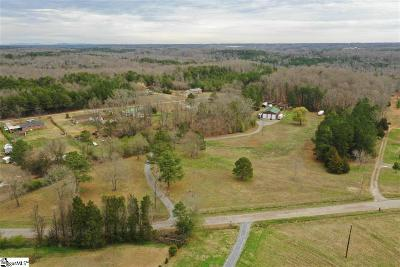 Anderson Single Family Home For Sale: 1080 Mountain Springs