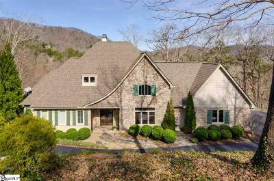Travelers Rest Single Family Home For Sale: 309 Sedgewick