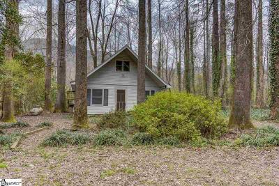 Marietta Single Family Home For Sale: 134 Pinnacle Lake Road