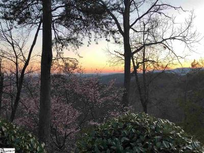 Travelers Rest Residential Lots & Land For Sale: 24 Hidden Mountain