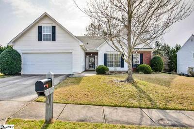 Greenville County Single Family Home For Sale: 5 Castle Hall