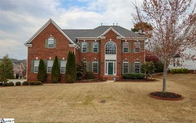 Greenville County Single Family Home For Sale: 206 Winding River
