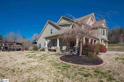 Travelers Rest Single Family Home For Sale: 945 Bailey Mill