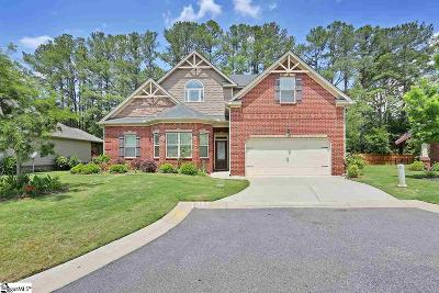 Greer Single Family Home For Sale: 227 Wando