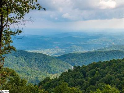 Greenville Residential Lots & Land For Sale: Anderson
