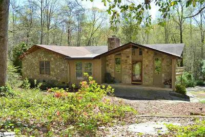 Easley Single Family Home For Sale: 223 Doberman