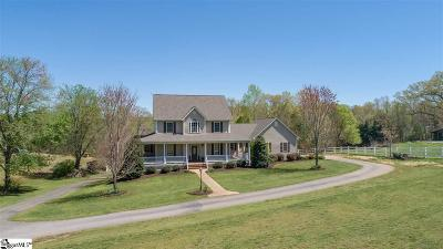 Travelers Rest Single Family Home For Sale: 30 Robertson