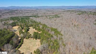 Greenville Residential Lots & Land For Sale: 40 Anders