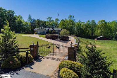 Simpsonville Single Family Home For Sale: 210 Black