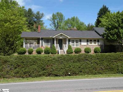 Greenville Single Family Home For Sale: 1907 State Park