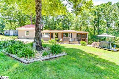 Greenville Single Family Home For Sale: 245 Piney