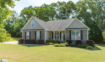 Anderson Single Family Home For Sale: 123 Chad