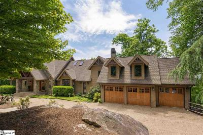 The Cliffs At Glassy, The Cliffs At Keowee, The Cliffs At Keowee Falls, The Cliffs At Keowee Falls North, The Cliffs At Keowee Falls South, The Cliffs At Keowee Springs, The Cliffs At Keowee Vineyards, The Cliffs At Mountain Park, Cliffs Valley Single Family Home For Sale: 66 Wild Ginger
