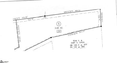 Campobello Residential Lots & Land For Sale: 294 Lewis