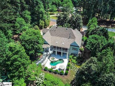 Spartanburg Single Family Home For Sale: 244 Indian Wells