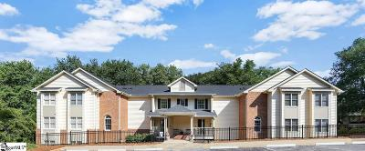 Greenville County Condo/Townhouse For Sale: 102 Swansgate