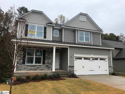 Greenville County Single Family Home For Sale: 213 Sun Shower #lot 13