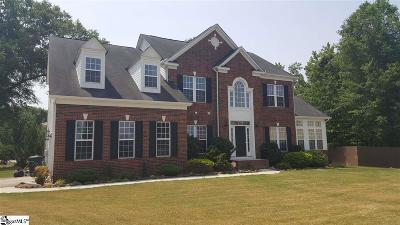 Travelers Rest Single Family Home For Sale: 14 Pipers Glen